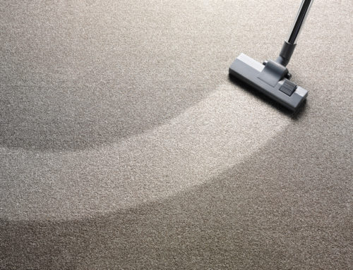 How to Deodorize Carpet: 7 Effective Methods