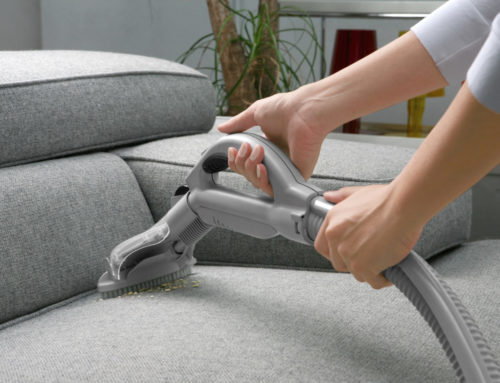 5 Benefits of Hiring Professional Upholstery Cleaning Services